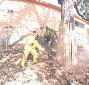 Air Spade / Root Flare Excavation Service